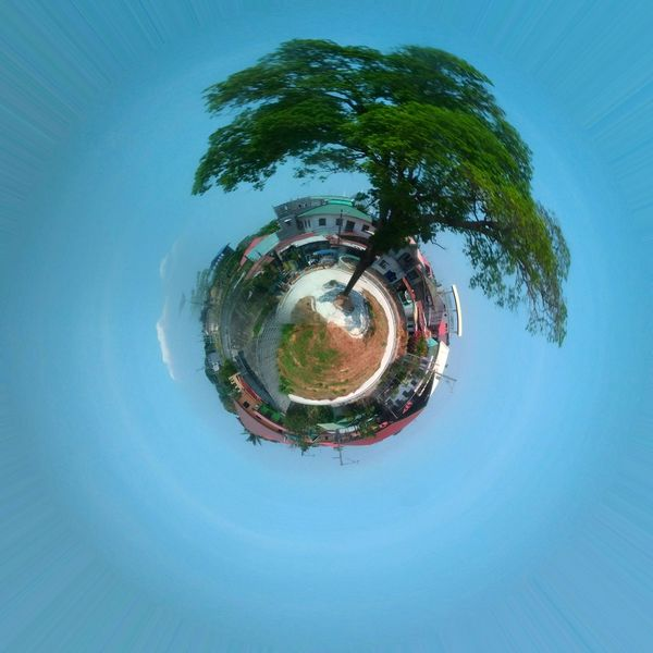 Outdoors Concentric Tree Distorted Image Circle Planet Earth Sky No People Day Planet - Space Nature Beauty In Nature Urban Lifestyle Urban Photography Adapted To The City Environmental Portrait Resist Cut And Paste