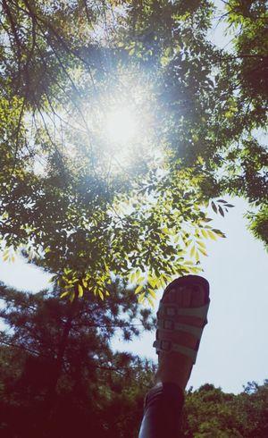 * 햇살 인천대공원