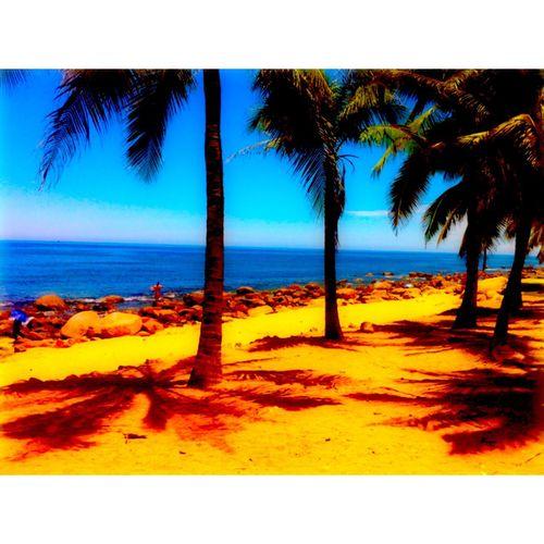💛💙 Beach Sea