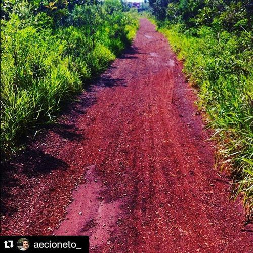 Olha aí @aecioneto_! ・・・ Corrida do dia Retiro Trailrunning Gripe Foitenso Varamato