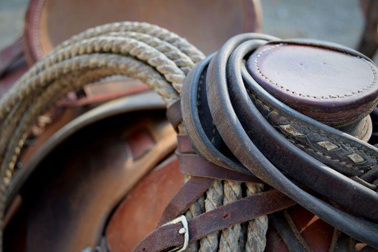 Close-up of leather belts on horse saddle