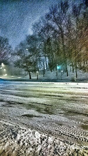 Night Snow Fall Trees Road SNOW NIGHT