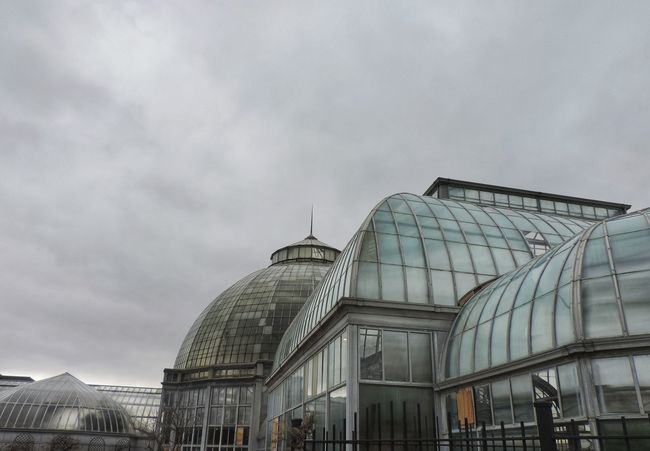Iconic Buildings Tourist Pure Michigan Iconic Overcast Michigan Puremichigan DetroitMichigan Downtown Detroit Detroit Michigan TheD Detroitlove Tourism 313 Detroit Detroit Metro Detroit River Belle Isle Conservatory