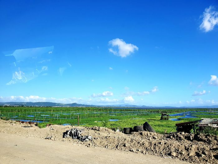 """A place i pass by in the Philippines a lot in Rizal.. """"Floodway"""". They extensively grow """"Kangkong"""" (Water Spinach) and other more plants and greens that grow on the riverside. Love this view, always. 💓 Travel EyEmNewHere Kangkong Waterspinach Philippines Riverside Scenery Water Windy Rizal, Philippines Floodway Agriculture Rural Scene Blue Field Sky Cloud - Sky Calm Cultivated Land Crop  Tranquil Scene Ocean Scenics EyeEmNewHere"""
