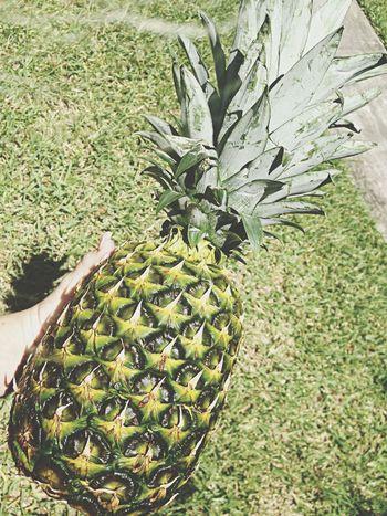 Pineapple Hellyeah Enjoying Life Happy