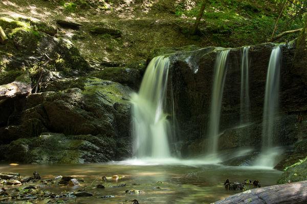 Ehrbachklamm Beauty In Nature Ehrbachklamm Flowing Flowing Water Forest Hunsrück Idyllic Langzeitbelichtung Long Exposure Outdoors Scenics Tranquil Scene Tranquility Traumschleife Ehrbachklamm Wasserfall Water Waterfall