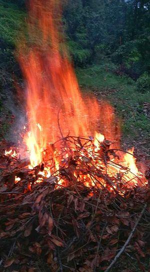 Turkey Karadeniz Artvin Arhavi Arkabi Pilarget Sidere Derecik Köye çıkılırsa Açık Ateş Yakılır 😍😌😊