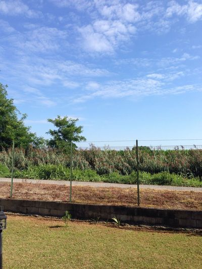 Countryside Bereguardo Lombardia Italy Plant Sky Nature Cloud - Sky Day Tree Fence Growth Field Agriculture Landscape Boundary Rural Scene Barrier Tranquility Land Security Sunlight Protection
