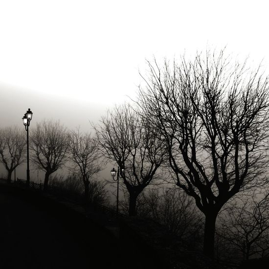 Inverno. Bw Blackandwhite Bw_collection BW_photography Bw_lover Hills Fog Winter Trees Winter EyeEm Best Shots EyeEm Nature Lover Wintertime Sky Outdoors Nature Animal Wildlife No People