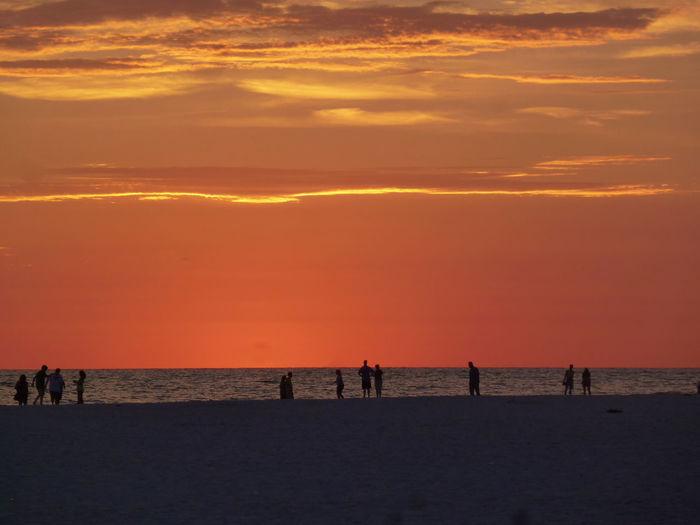 Silhouette of people enjoying on beach